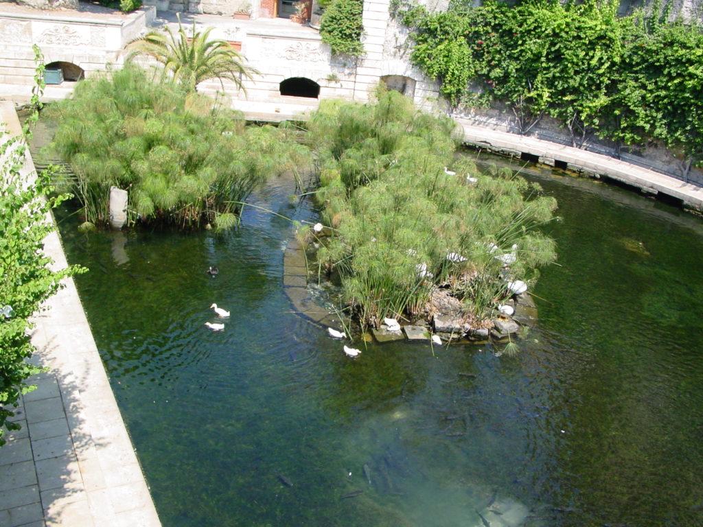 Casa vacanze Il volodi Pindaro - Fonte Aretusa - Siracusa